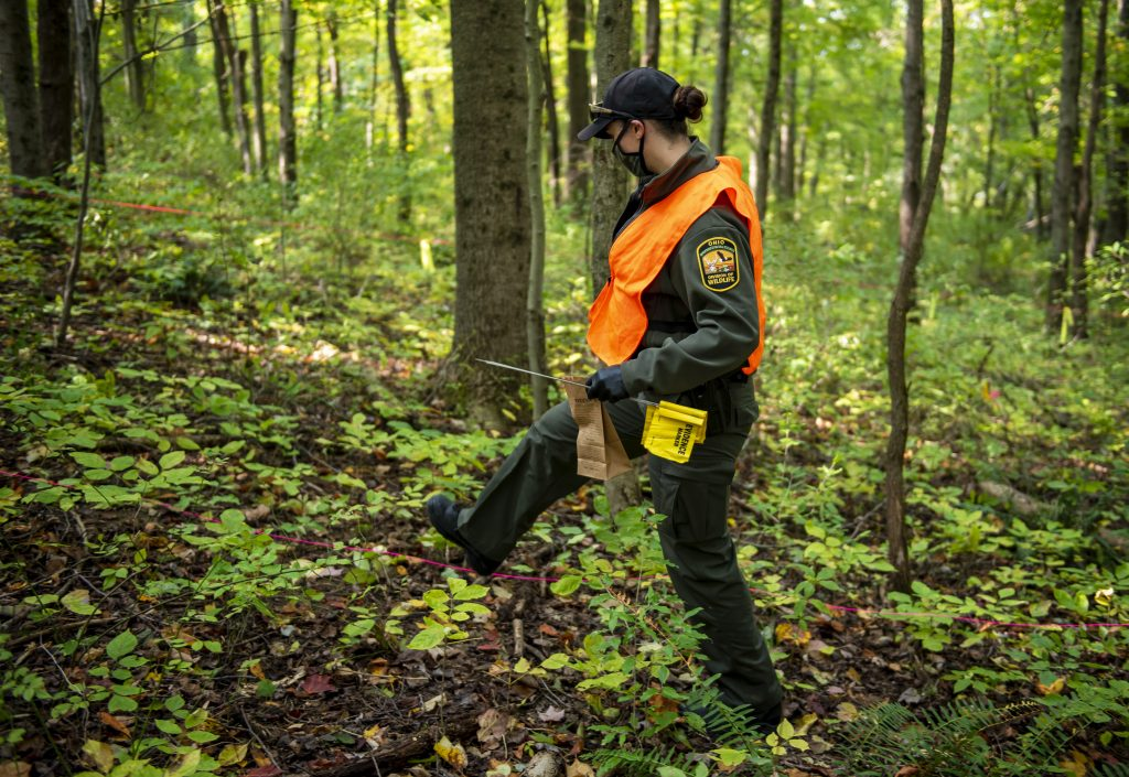 A wildlife officer steps over brush at a simulated crime scene.