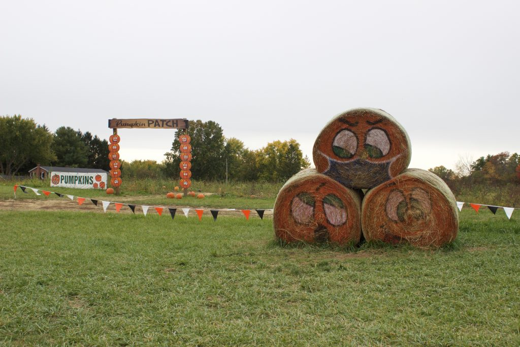 Three haybales stacked in a pyramid in front of a pumpkin patch. The haybales have faces painted onto them, and the top one has a mask painted over the mouth and nose.