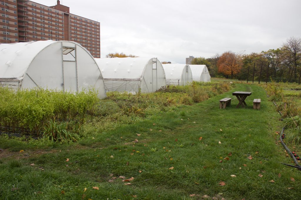 Hoop houses sit on Ohio City Farm, in Cleveland, Ohio.