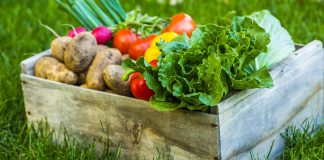 vegetables in a wooden crate set down on the grass.
