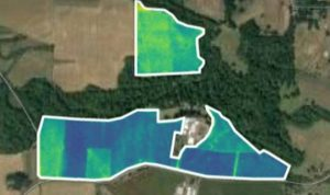 satellite imagery for pastures