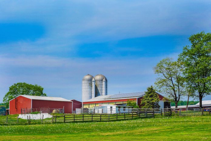 A picture of a farm on a sunny day.