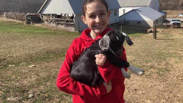 girl with goat kid
