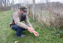 A man points out plants growing on a farm.