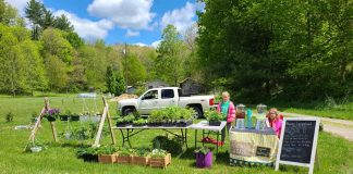 kids at farmers market stand