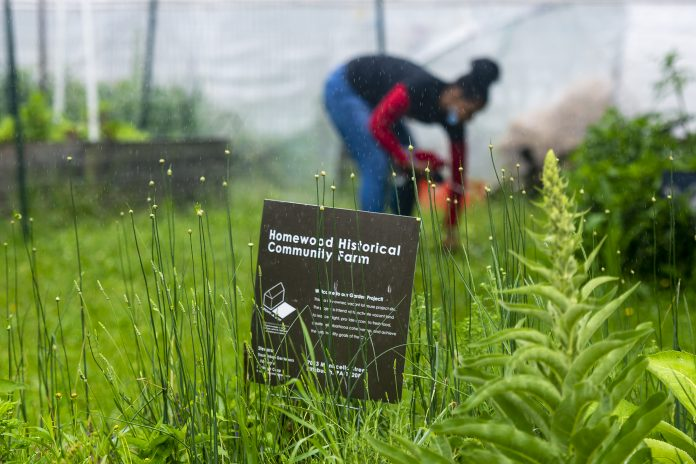 A woman gathers her things in the rain behind a sign for the Homewood Historical Community Farm, in Pittsburgh.
