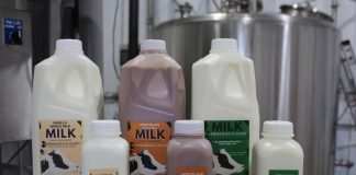 milk lineup for denmandale dairy