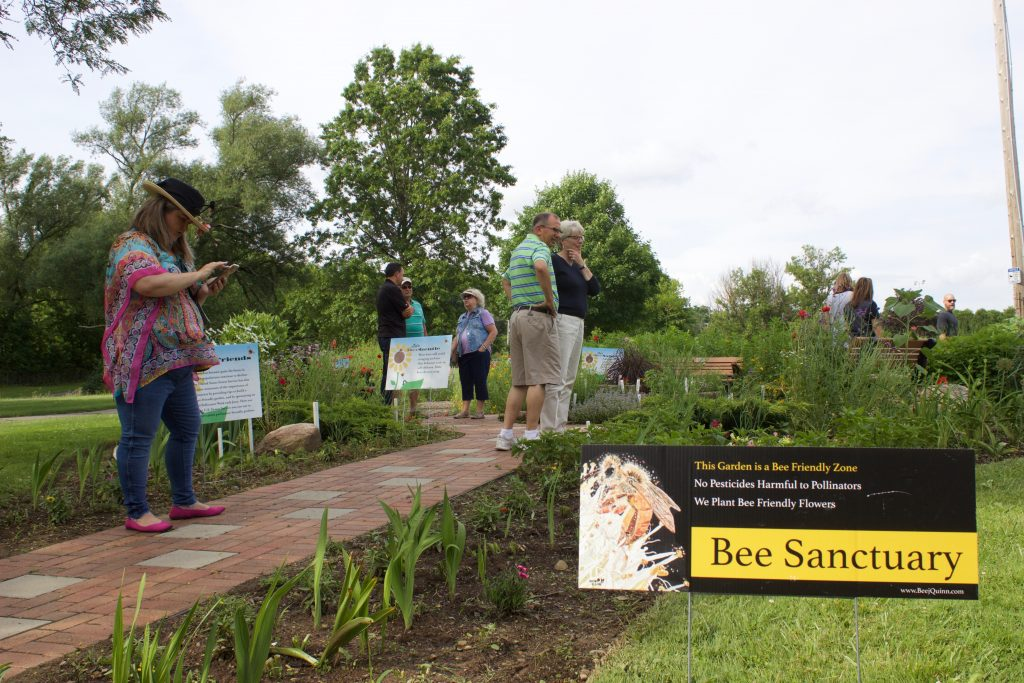 People checking out a pollinator garden in a park.