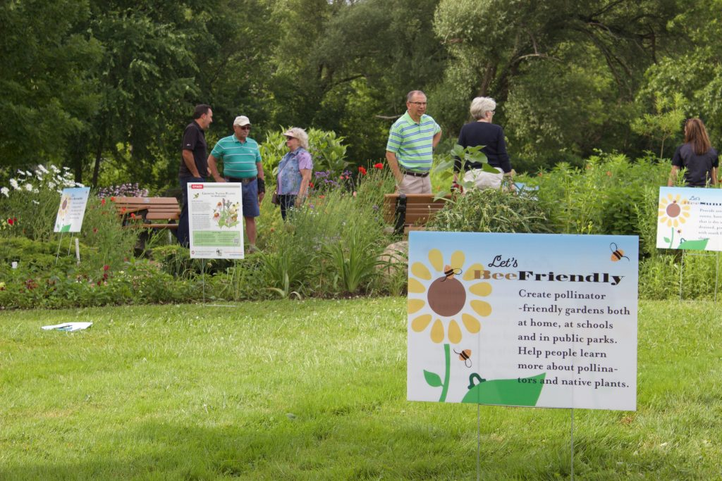 People look at a pollinator garden in a park.