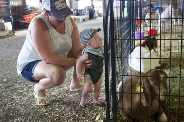 A woman and a child stand next to a goat pen at the fair.