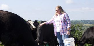 A woman stands with several beef cattle after pouring out some grain for them in a pasture on her family farm, in West Virginia.